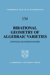 Wholesale Birational Geometry of Algebraic Varieties Made In China book