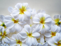 Wholesale Hawaiian Plumeria Frangipani Artificial Silk Flower Heads white