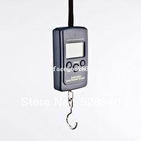 Pocket Scale <50g Yes Free Shipping 40kg x 10g Portable Mini Electronic Digital Scale Hanging Fishing Hook Pocket Weighing Balance