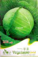 Wholesale Pack Seeds Heirloom Non GMO Healthy Organic Vegetable Cabbage Seeds C033