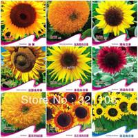 Семена цветущие Цены-10 различных сортов подсолнечника семена бонсай цветы четырех сезонов бесплатная доставка 150seeds+