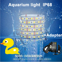 Wholesale Super waterproof IP68 Led Strip M roll V SMD White k k can be used underwater aquarium light Promote plant growth A adaptor
