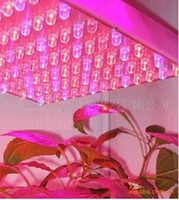 Wholesale Register Hydroponic Plant Grow Growing W LED Bulb Light Lamp V Panel Red Blue