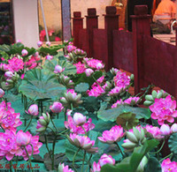 Wholesale 2016 New EVA Waterproof Artificial Lotus Flower Beautiful Artificial Flowers Holiday Decorations Home Decor