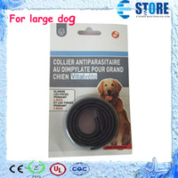 Wholesale 200 days Effective Anti Pet Dog Fleas amp Ticks Mosquitoes Collar Elimination Neck Strap for Large Dogs Pets wu