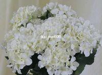 Wholesale Economic Good Quality Silk Artificial Hydrangea flower HEAD Head Diameter about cm C can Mix Per