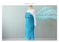 TuTu Summer Straight Brand 2014 new Hot Girl Frozen Dress Elsa & Anna Summer Dress baby girls Princess Dresses Children Clothing Drop Shipping