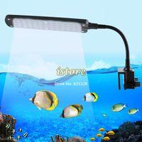 Wholesale Festival Practical LED Aquarium Fish Water Plant Mode Clip White amp Blue Light Bulb Aquatic plants Lamp SV000357 UK Plug