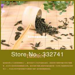 Wholesale g Bulk China Gingko Leaf Tea yin xing blood pressure