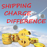 Wholesale Additional Pay on Your Order Extra Fee Make up the Difference for exral shipping charge