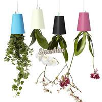 Wholesale Sky Planter Upside Down Plant Pot or Home Office Decoration Plastic Pots Vase Garden Home Decoration