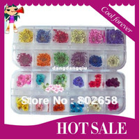 Wholesale flowers Nail Art Dry Dried Flowers Decoration With Different Colors
