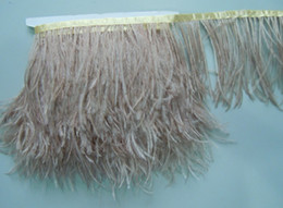 Free Shipping-10 YARD lot Champagne taupe ostrich feather trimming fringe feather trimming fringe 5-6inch in width
