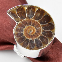 ammonite rings - 2015 Promotion Real Rodamiento Roller Cone Tapered Bearing Natural Ammonite Vintage Ring Jewelry Silver Women And Man Rings R0067 r0068