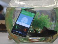 Wholesale Waterproof Smartphone S5 MTK6592 Octa Core Air Gesture G Moblie Phone Android GB Ram GB Rom MP Camera Google Play Store GPS