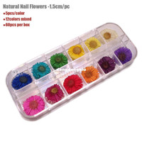 Wholesale Latest Popular Nature Pressed Flowers A Grade Dried Flowers For Nail Art And DIY Decoration cm box