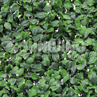 Wholesale SGS UV protected artificial fake boxwood mat cmX25cm synthetic hedges fake leaf foliage grass mat for garden G0602A001C