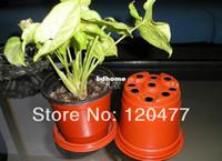 Wholesale Simple plastic flower pot double color flower pot plastic flower POTS soft very thin