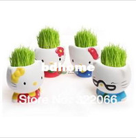 Wholesale Office small potted green mini plant the hello kitty grass head doll cute radiation