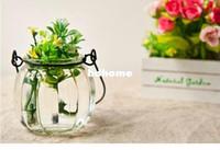 Pots OEM Glass Wholesale-Free Shipping Pumpkin Flower Pot Glass Garden Pot Cork Bottles Water Jar korean Stationery wholesale