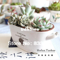 Wholesale Flower Pots Planters Upside Down Plant Pot Fleshier Plant Flower Pot Japanese Style Meat Smart Plant Pot Zakka White Ceramic