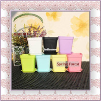 Wholesale Mini Smart SETS Garden and Flower and Planters Pots Set TRAY Use in Grafting or for Wedding