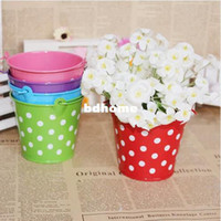 Wholesale Garden Supplies Pastoral Dot Mini Metal Flower Pots Planters Green Plant Nursery Pots pieces
