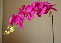 fabric and plactis artificial orchid flower - Silk Orchids cm quot Long Artificial Flowers Single Vanda Phalaenopsis Oncidium for Xmas Party Wedding Home Decoration