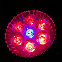 Wholesale price E27 LED Bulb Grow Lamp W W Red Blue LED Plant Lamp Hydroponic Grow Light Bulbs for Garden Greenhouse