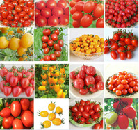 tomato seed - Professional Cherry Tomato Seeds Lycopersicon Esculentum Seeds Vegetable Fruit Seeds Garden Supplies Promotion Partio Items