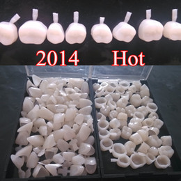 Wholesale 2 boxes new Dental Temporary Crowns Anterior Front Molar Teeth Polycarbonate Cap Veneer Crown Acrylic Denture