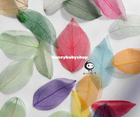 Wholesale colorful leaf vein bookmark DIY decorative art and craft material leaves the card activity
