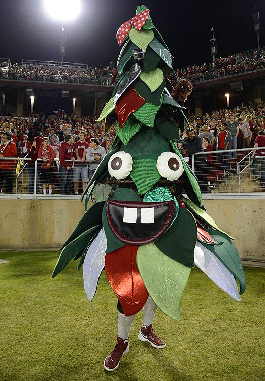 Stanford Cardinal Mascot The Tree College Football Mascot ... | 522 x 750 jpeg 99kB