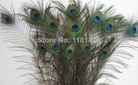 Wholesale Peacock Tail Feathers Natural inch Long For Bouquet DIY Decoration Peacock Feather