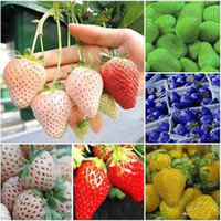 Wholesale 1Pack Seeds Rare Delicious Strawberry Seeds Vegetables Fruits Seeds Garden Farm New