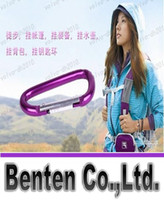 Wholesale hot selling Carabiner Camp Snap Clip Hook Keychain Hiking mixed color LLFA5870