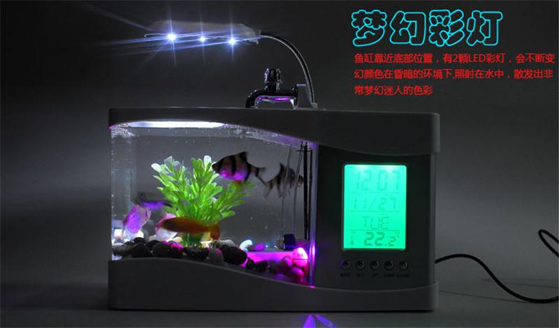 Light The Aquaria.Eclairage Led Aquarium Marin. Marine ...