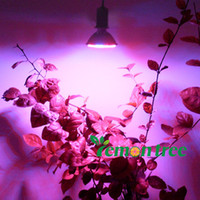Wholesale Cheapest E27 RED and BLUE LED W Hydroponic Plant Grow Growth LED Light Bulb V NEW arrival