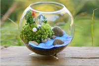 Wholesale Hot Sale Dia cm glass vase Round glass vase fish bowl Handmade Succulent Terrarium Kit Home decoration Hostess Gift