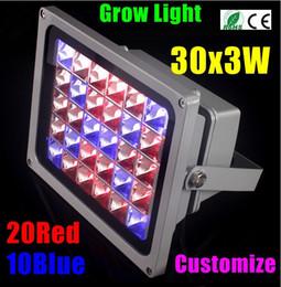 Hot sales 2015 New 90W 30X3W Hydroponic Plant Flood LED Grow Light Bulb Blue RED AC85 265V NEW LED Bulbs