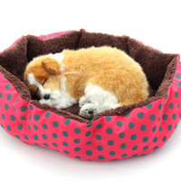 Wholesale 100pcs New dog bed cotton pet dog puppy cat soft fleece cozy warm bed for homeless pets house mat for pet EMS