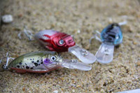 Wholesale Crank fishing lure Fishing Tackle Minnows Plastic hard bait lure crankbait for fresh water g cm Free Box
