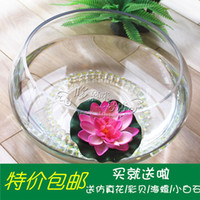 Wholesale round clear glass goldfish bowl large turtle tank drum cylinder vase ornaments home hydroponic containers