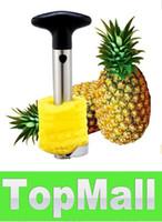 Wholesale JJ911 Fruit Pineapple Corer Slicer Peeler Cutter Parer Knife Stainless Kitchen Tool