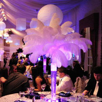 Wholesale 100pc quot White Ostrich Feather Plume AAA quality for wedding centerpieces table decoration Z134