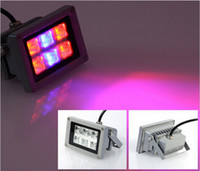 Wholesale 18W X3W Red Blue LED Flood Grow Light for Indoor Plants Hydroponics Plants