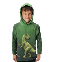 Wholesale 2014 Europe and America Style D Dinosaur cotton Hoodies amp Sweatshirts genuine manufacturers Long Sleeve children s clothing PX