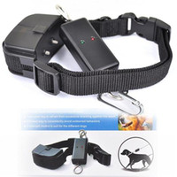 Wholesale Remote and Leash Walking Training Device Pet Dog Walking Training Remote Collar System PET899