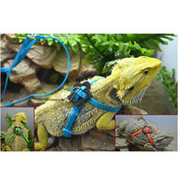 Wholesale High Quality Reptile Lizard Harness amp Leash Adjustable Durable Rope Fashion Colors For Choose Hot Selling