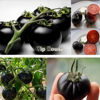 Wholesale Dropshipping Bag black tomato vegetable seeds fruit seeds high quality summer food germination B003 SV002837